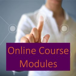 1 Online Course Modules