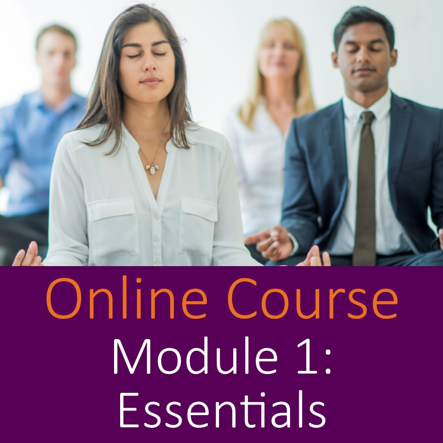 practical mindfulness online module 1