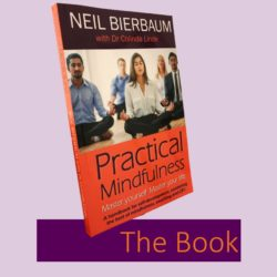 practical mindfulness the book